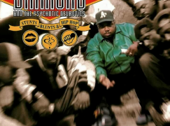 Diamond D & The Psychotic Neurotics – Sally Got a One Track Mind