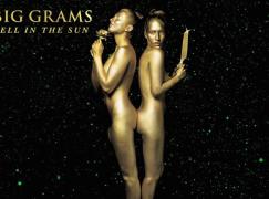 Big Grams (Big Boi & Phantogram) – Fell In The Sun