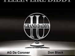 Grand Daddy I.U. – Hustlin / Feelin Like Diddy