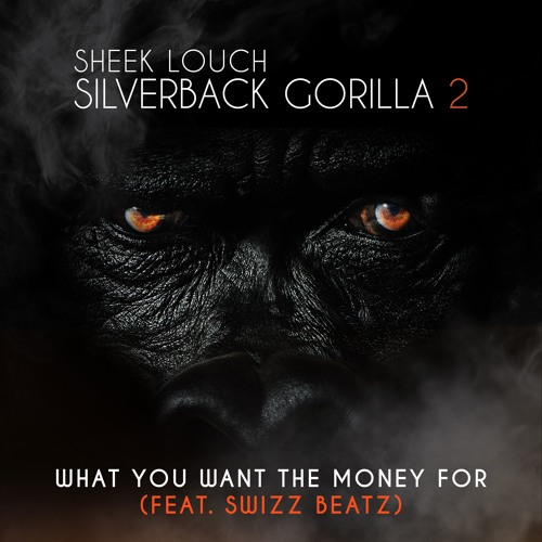 Sheek Louch - What You Want The Money For ft. Swizz Beatz