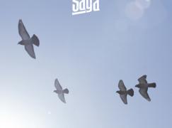 Saga – Up ft. Blu