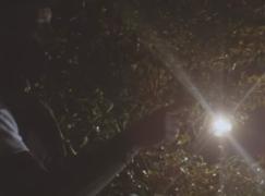 Joe Budden – Flex ft. Fabolous & Tory Lanez