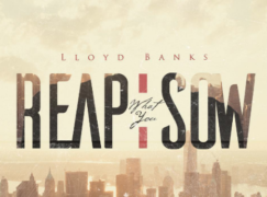 Lloyd Banks – Reap What You Sow (prod. Tha Jerm)