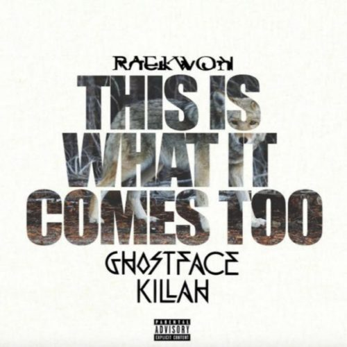 Raekwon - This What It Comes Too ft. Ghostface Killah (RMX)