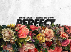 Dave East – Perfect (feat. Chris Brown)