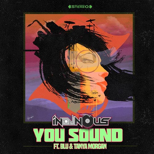 inDJnous You Sound ft. Blu & Tanya Morgan