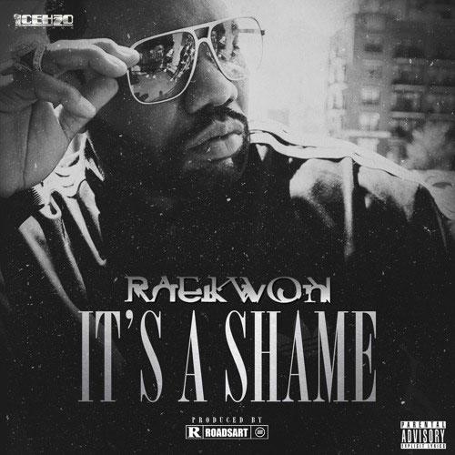 Raekwon - It's A Shame (prod. RoadsArt)